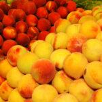 La producción de fruta de hueso se sigue estimando un 10-15% inferior al año pasado