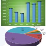 Siguen aumentando las exportaciones españolas de bovinos vivos