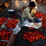 Un tercio de los alimentos producidos en el mundo se desperdicia cada año