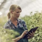 El Mapama ultima la edición de un Manual de Titularidad Compartida de las Explotaciones Agrarias