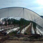 CICLOAGRO aumenta el número de puntos de acopio y recogida de plásticos agrícolas en Almería