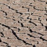 El Gobierno de Aragón convoca las ayudas con carácter retroactivo destinadas a financiar los préstamos formalizados por la sequía y otras adversidades