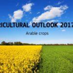 En 2030 habrá 4 millones de ha menos de superficie agraria