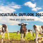 Previsto un aumento de la producción de carne en la UE para 2030