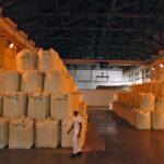El índice de precios de los alimentos de la FAO baja en noviembre por la abundancia de cereales