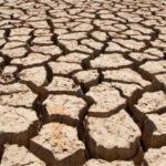 El próximo 21 de diciembre se iniciará la consulta pública de los borradores de los nuevos Planes de Sequía