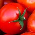La contratación de tomate roza los 2 Mt en Extremadura para esta campaña