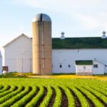 EEUU beneficiará fiscalmente a los agricultores que vendan a cooperativas