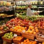 La exportación hortofrutícola aumenta un 2,6% hasta noviembre
