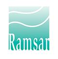 SEO/BirdLife alerta a los organismos internacionales del mal estado de los humedales Ramsar
