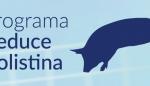 El sector porcino español reduce el uso de colistina en más de un 80%