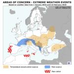 Solo daños insignificantes por heladas en los cereales de invierno de la UE