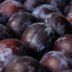 El Ministerio de Agricultura se olvida de la ciruela extremeña en el plan para mejorar el sector de la fruta dulce