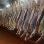 Los mataderos argentinos solo podrán funcionar si tienen controlador electrónico