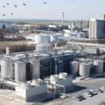 La segunda azucarera de Francia aumenta su producción en un 25%