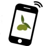 Un proyecto diseñará una herramienta digital para una planificación fitosanitaria sostenible en olivar
