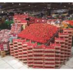 Carrefour compra 11,5 millones de kg de fresón de temporada a agricultores y cooperativas españolas