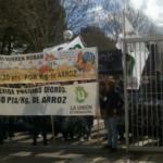 400 agricultores se concentran en Feval para denunciar el presunto para bajar el precio del arroz