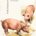 Publicadas las bases zootécnicas para el cálculo del balance alimentario de nitrógeno y fósforo en porcino y aves