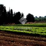 Diverfarming, proyecto europeo para definirlas combinaciones de cultivos más rentables para diferentes regiones de la UE