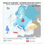 Los cereales de invierno en la UE están en buen estado a pesar de la inusual meteorología