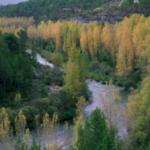 El Ministerio de Agricultura inicia el trámite de información pública del Real Decreto de declaración de sequía en la cuenca del Tajo