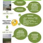 Se publican dos hojas informativas con las prácticas agrarias más efectivas de lucha contra el caracol manzana