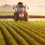 La EFSA trabaja en evaluaciones piloto sobre efectos acumulativos de los plaguicidas