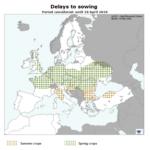La Comisión Europea revisa al alza los rendimientos de los cereales a pesar de la meteorología adversa y el retraso de las siembras