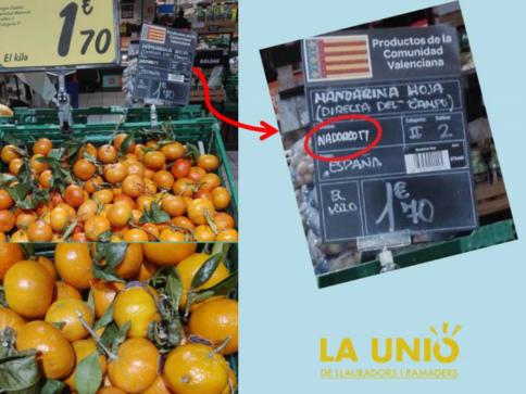Resultado de imagen de la mandarina valenciana no se vende