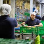 Patatas Meléndez suscribe un acuerdo con el comité de empresa que mejora sustancialmente las condiciones laborales de sus trabajadores.