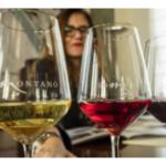 """Raquel Latre Latorre: """"El vino es gastronomía y, como tal, forma parte de la cultura y dieta mediterránea"""""""