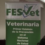 Creada la Federación Estatal de Sindicatos Veterinarios