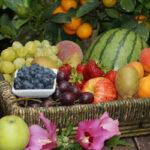 Se mantiene el régimen específico del sector de frutas y hortalizas en la propuesta de nueva PAC
