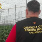 La Guardia Civil desmantela un grupo delictivo dedicado a sustraer productos agrícolas en Murcia