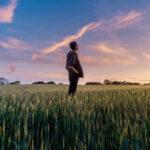 Publicadas las condiciones de incorporación agraria y planes de mejora en Castilla-La Mancha