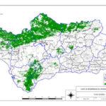 Publicada la superficie apta para montanera en Andalucía para 2018