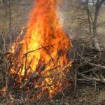 Las quemas agrícolas están prohibidas en la Comunitat Valenciana del 1 de junio al 16 de octubre