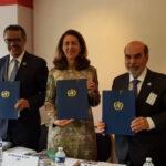 FAO, OIE y OMS se unen para luchar contra la resistencia microbiana