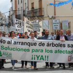 Afectados por la Xylella cortan la carretera nacional 332 de Benissa en una manifestación