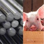 México responde a Trump con aranceles al porcino y otros productos agrarios