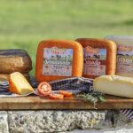 COINGA y el IRTA trabajan para dar valor al suero del queso Mahón
