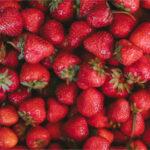 COAG Huelva pide que se investigue la situación de las temporeras de la fresa