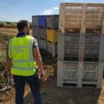 La Guardia Civil inspecciona fincas agrícolas para perseguir la contratación ilegal de trabajadores