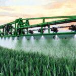 La Agencia francesa de seguridad alimentaria dictamina sobre posibles alternativas a los neonicotinoides