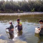 El cambio climático supondrá un gran impacto por la reducción de la cantidad de agua disponible del río Serpis