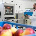 Campaña de poscosecha de fruta 2017: buena para manzana, mala para la fruta de hueso y complicada para la pera