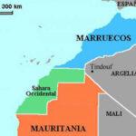 La superficie de frutas y hortalizas en el Sahara Occidental crecerá de 900 a 5000 hectáreas