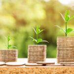 El sector agrario debe el 70 % de su renta, pero paga sus deudas mejor que otros sectores