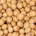 China reduce los aranceles a la soja a varios países asiáticos